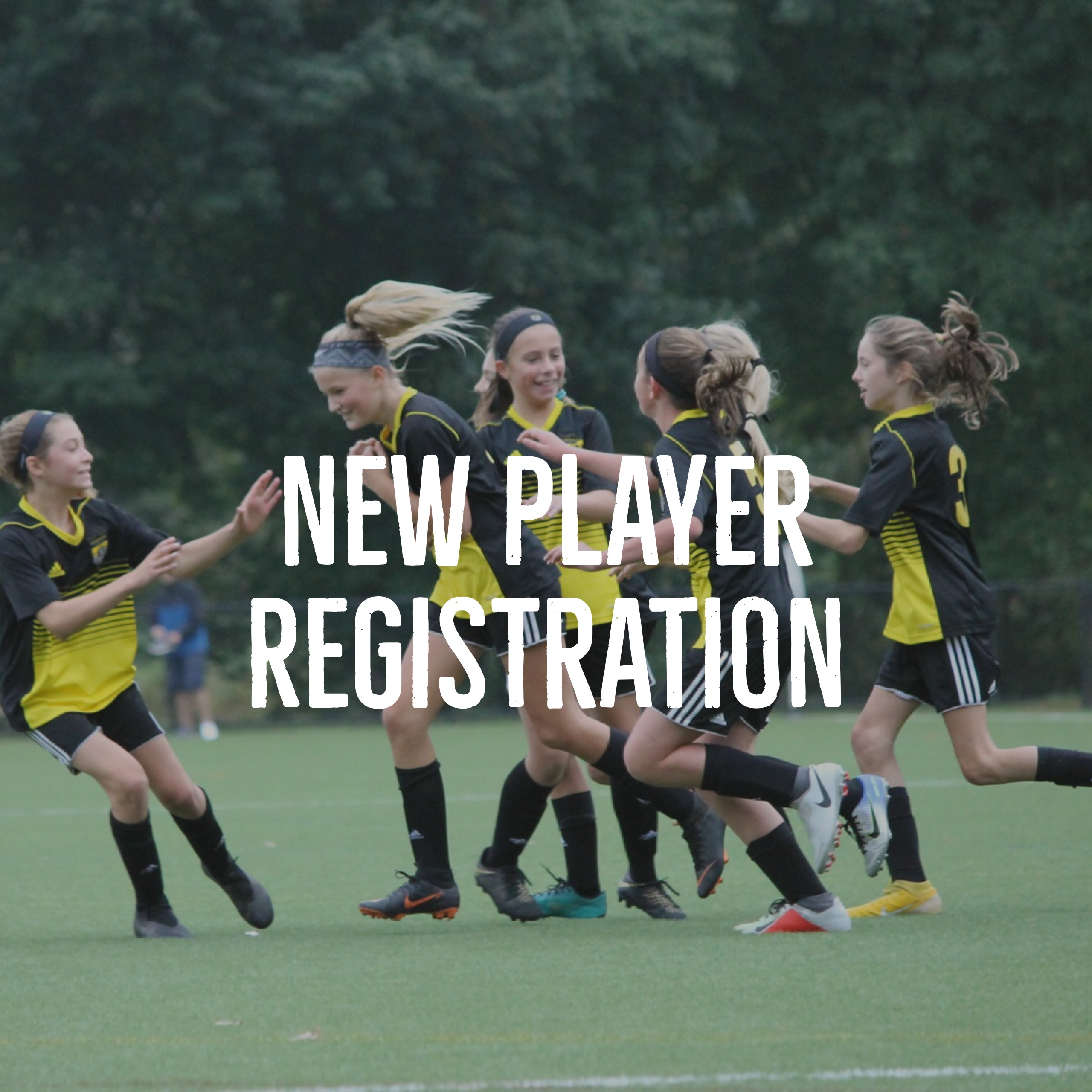 New Player Registration